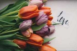 send flowers today to show a loved one you care - tulips