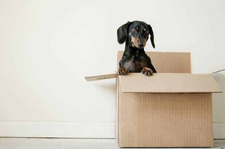 hire a van for moving house